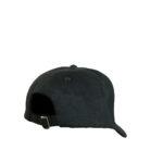 PRO-STYLE HEAVY BRUSHED COTTON LOGO CAP